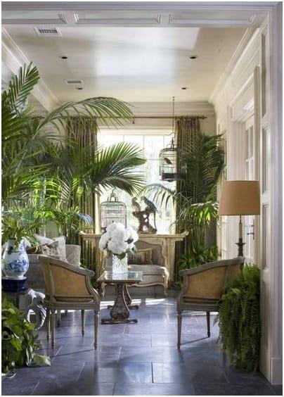 Plants invade the interior