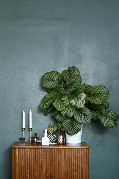 top trends decoration 2020 pinterest